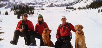 Avalanche Dog Rescue Team